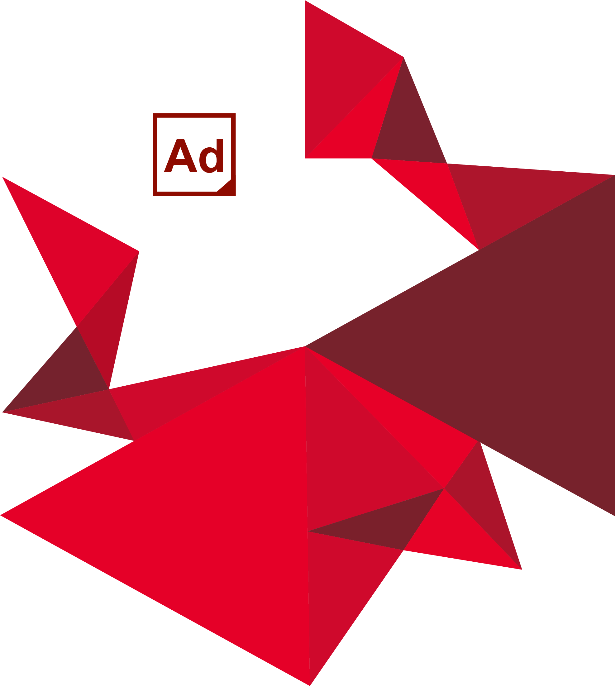 adams 2020 logo